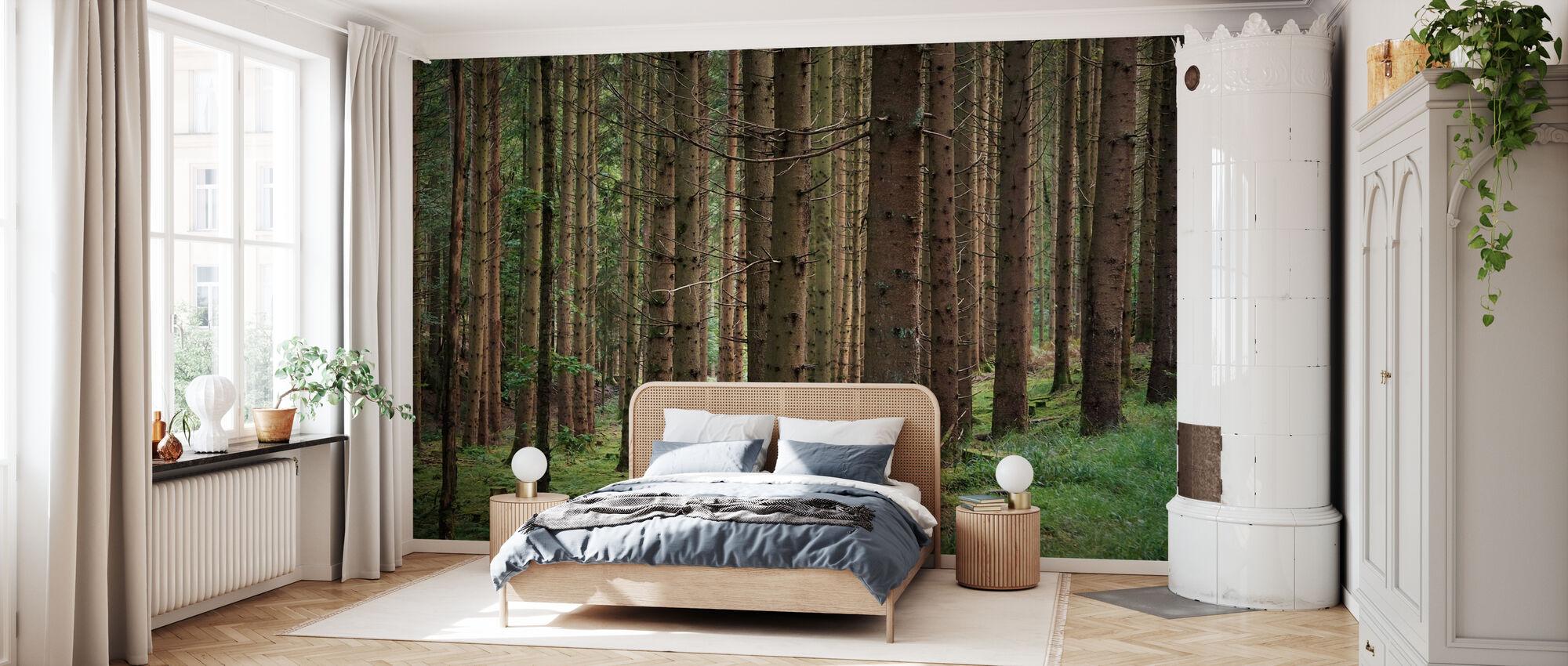 Coniferous Forest - Wallpaper - Bedroom