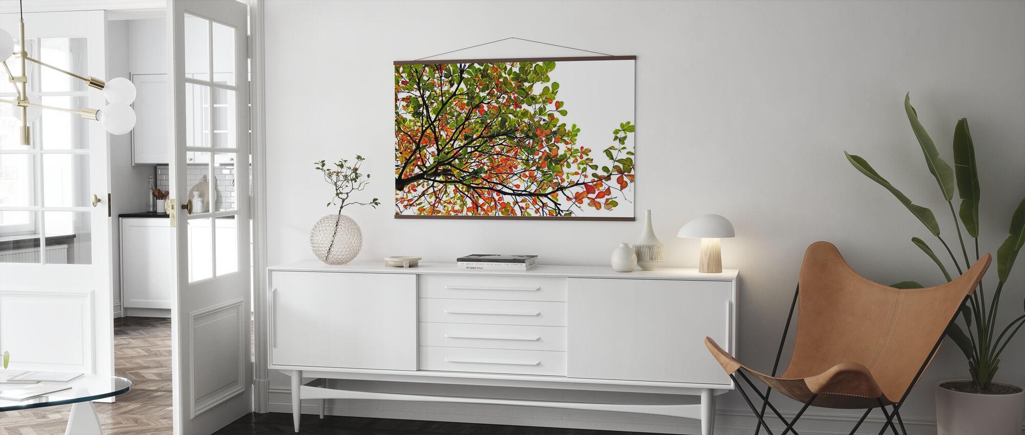 Fargerike Catappa blader - Plakat - Stue
