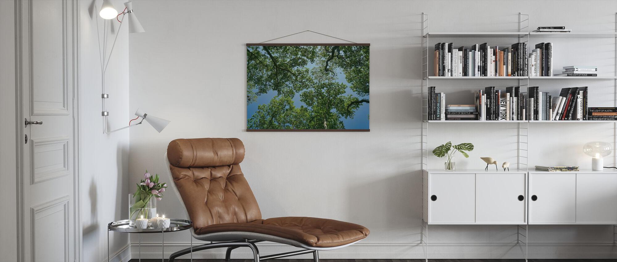 Skogtrær - Plakat - Stue