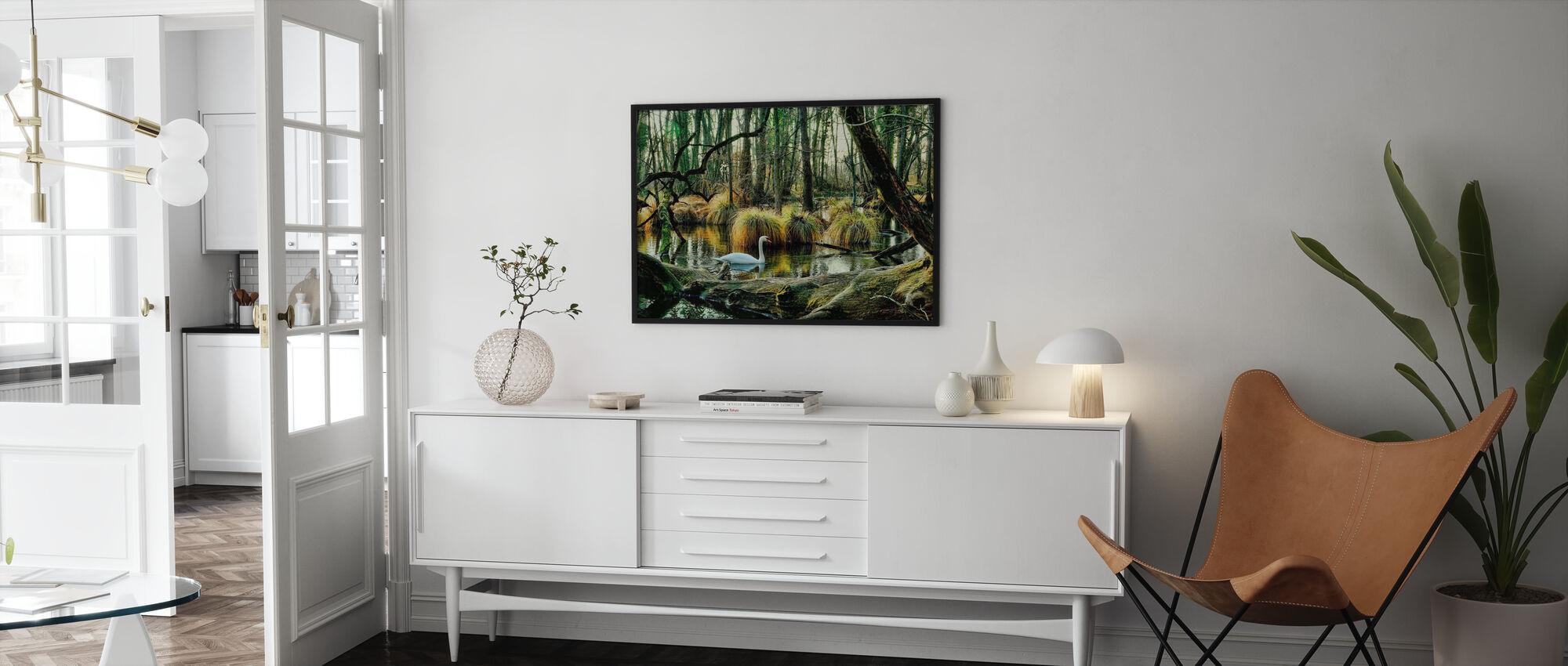 Swan in Swamp - Poster - Living Room