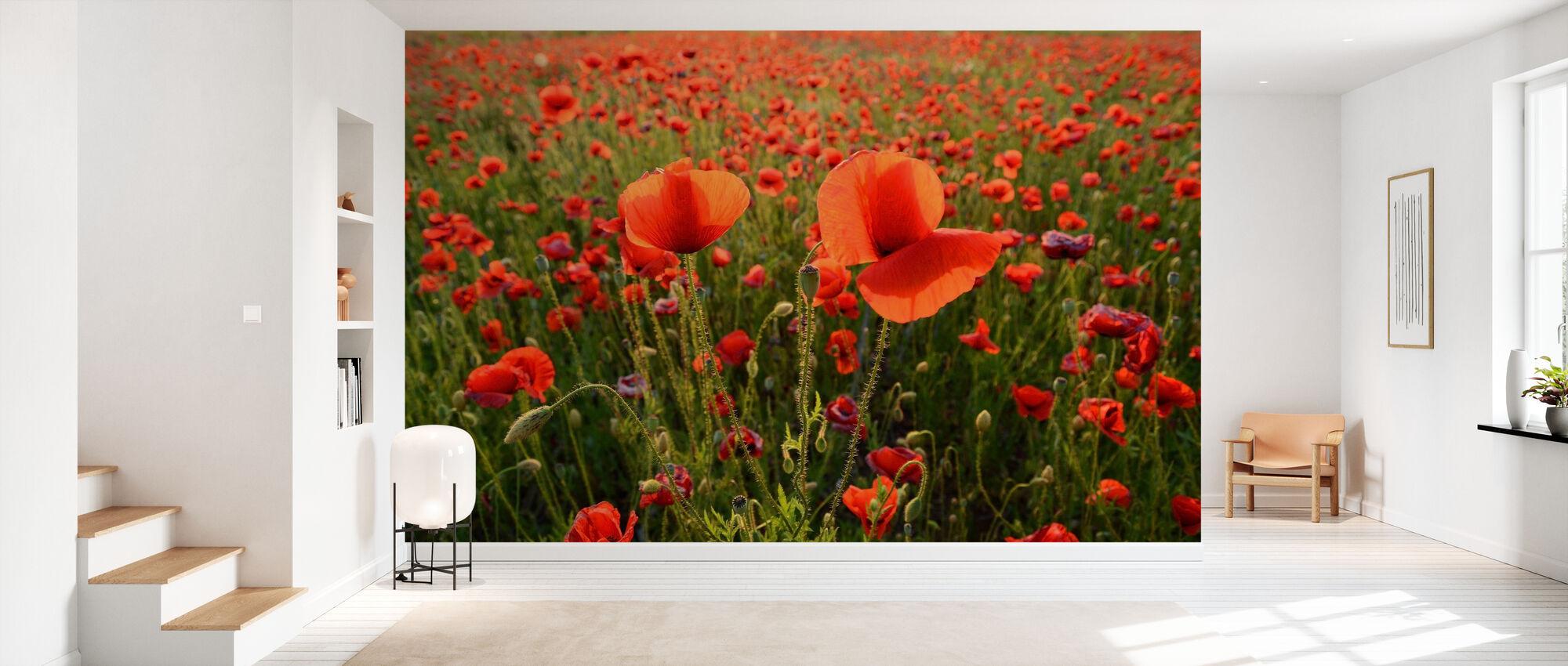 Poppy Fields - Wallpaper - Hallway