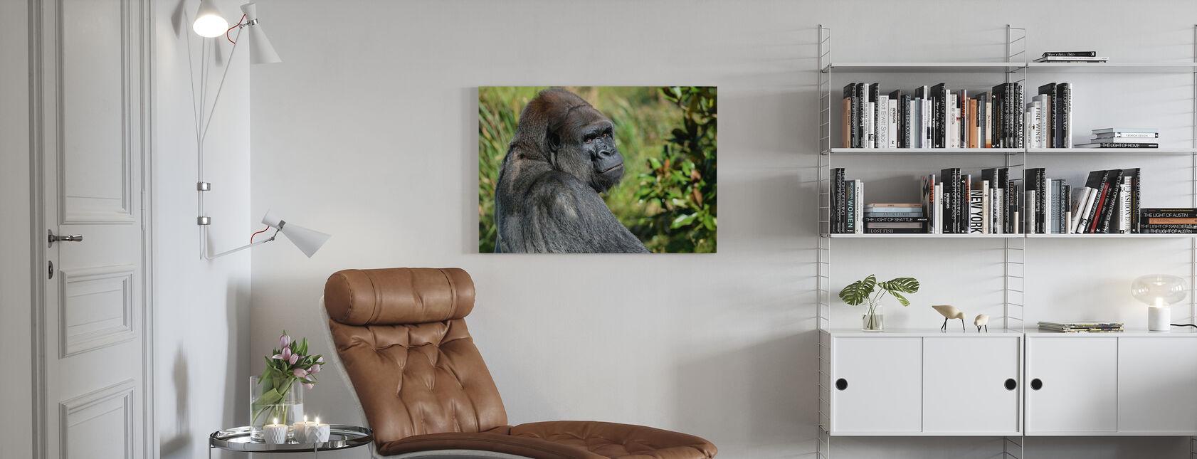 Gorilla Silverback - Stampa su tela - Salotto