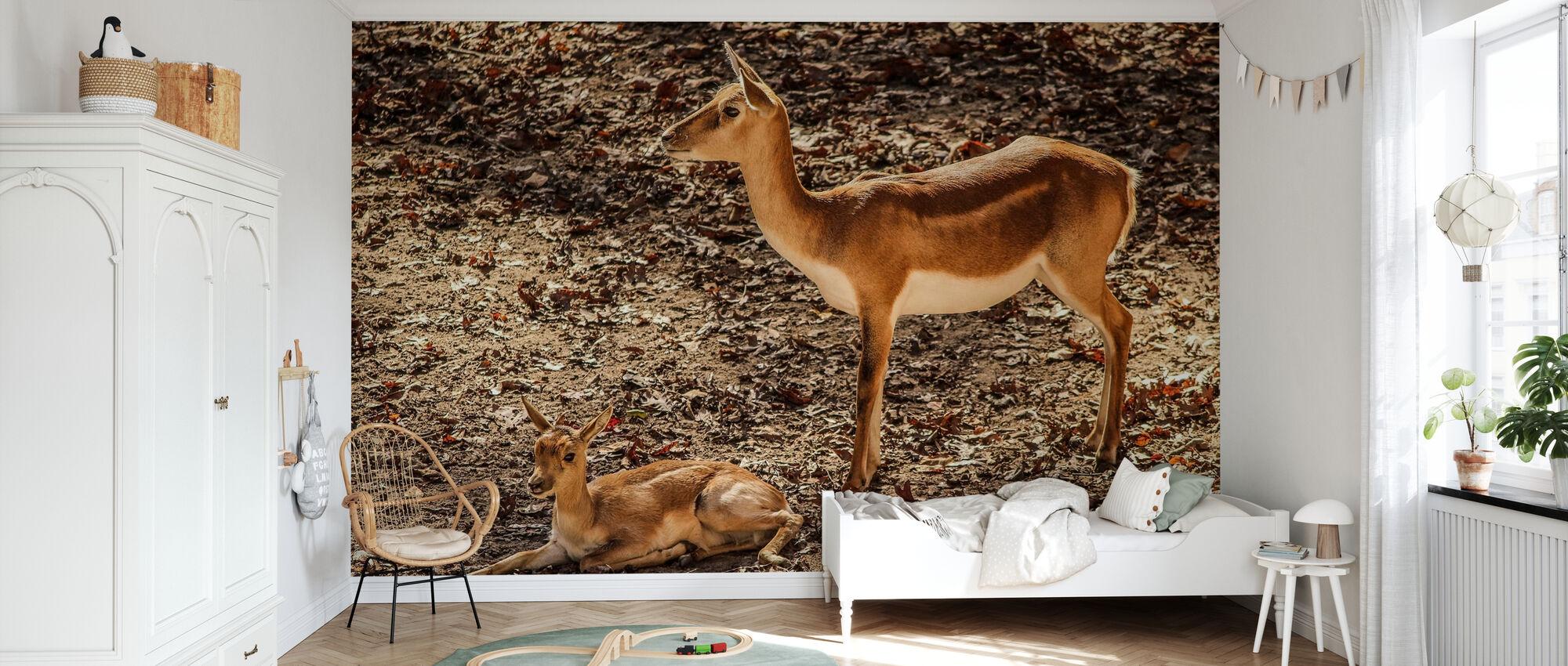 Gazelle Impala - Wallpaper - Kids Room