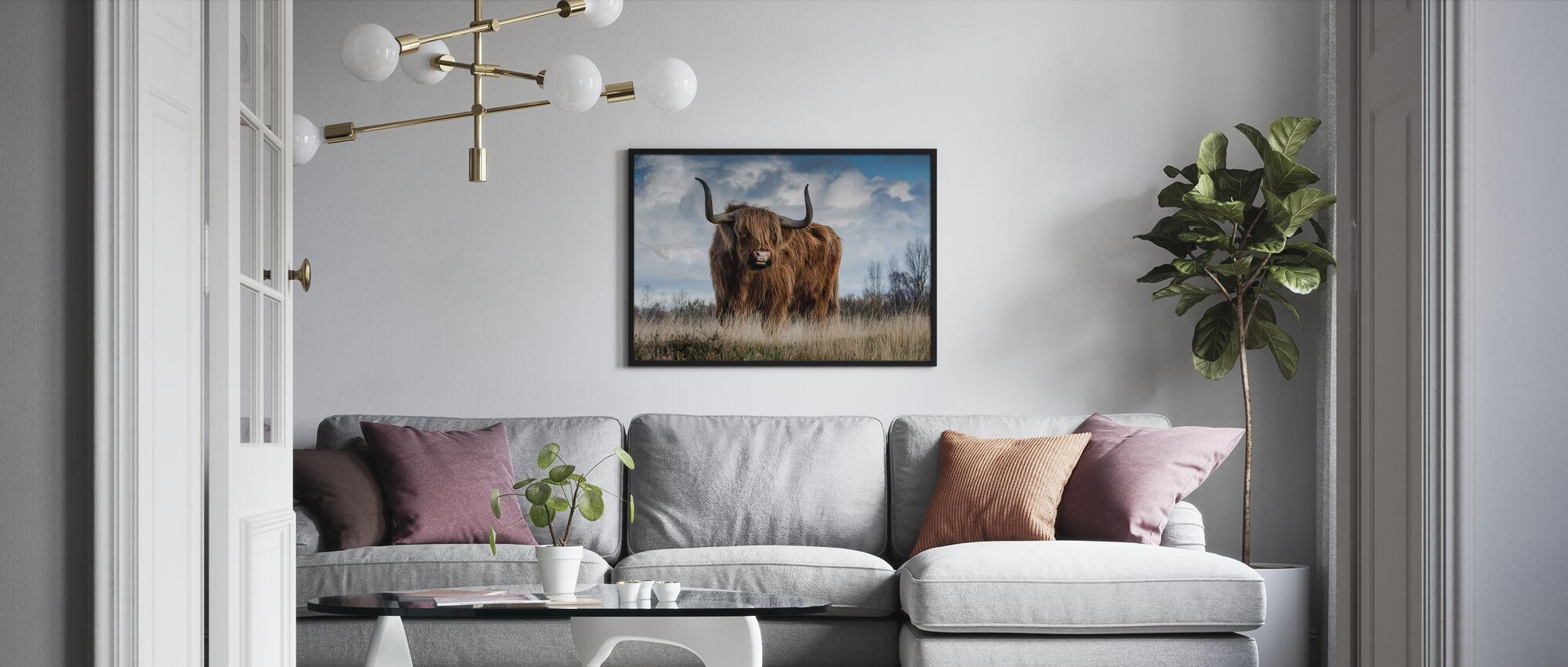 Stier auf der Wiese - Poster - Wohnzimmer