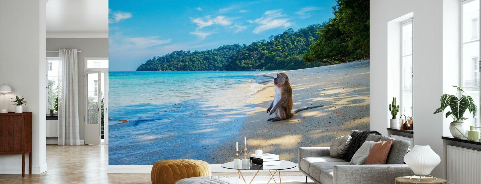 Aap bij het strand - Behang - Woonkamer
