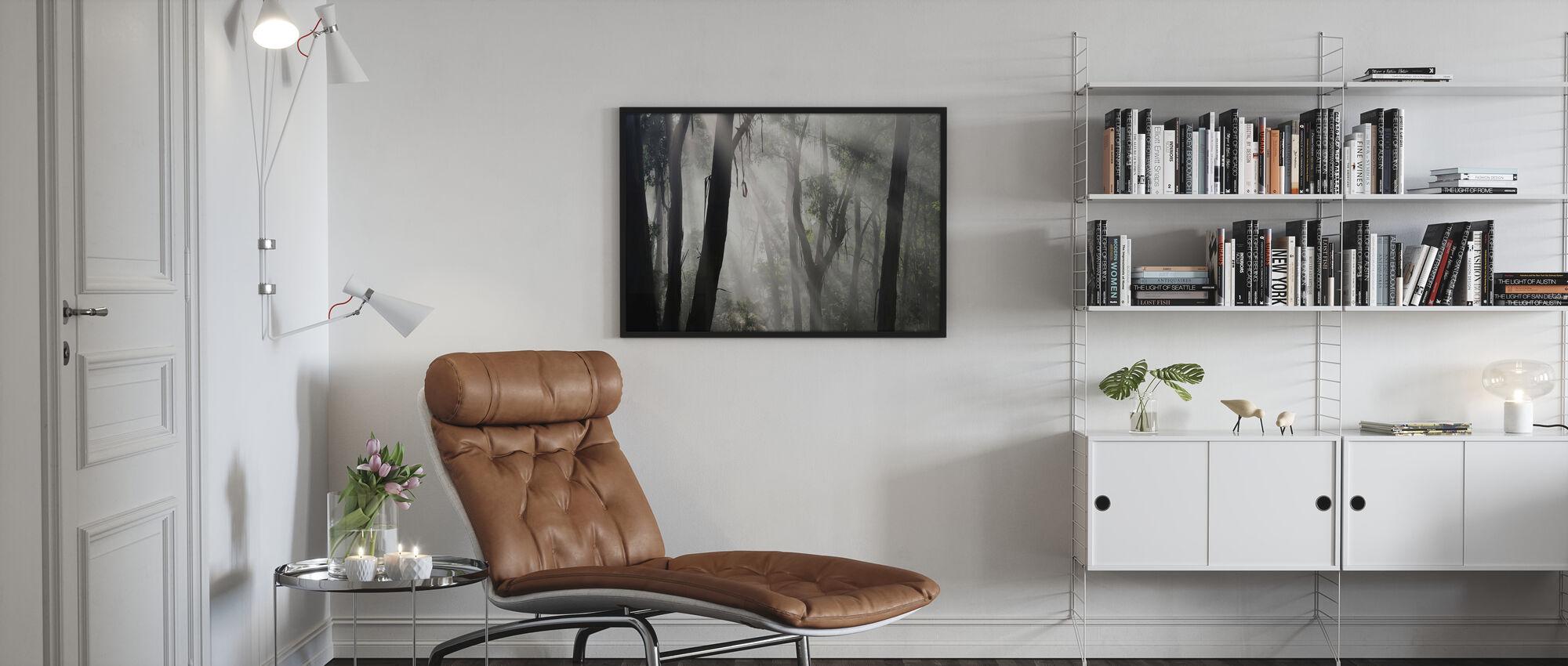 Eucalypt skog Tåke - Innrammet bilde - Stue