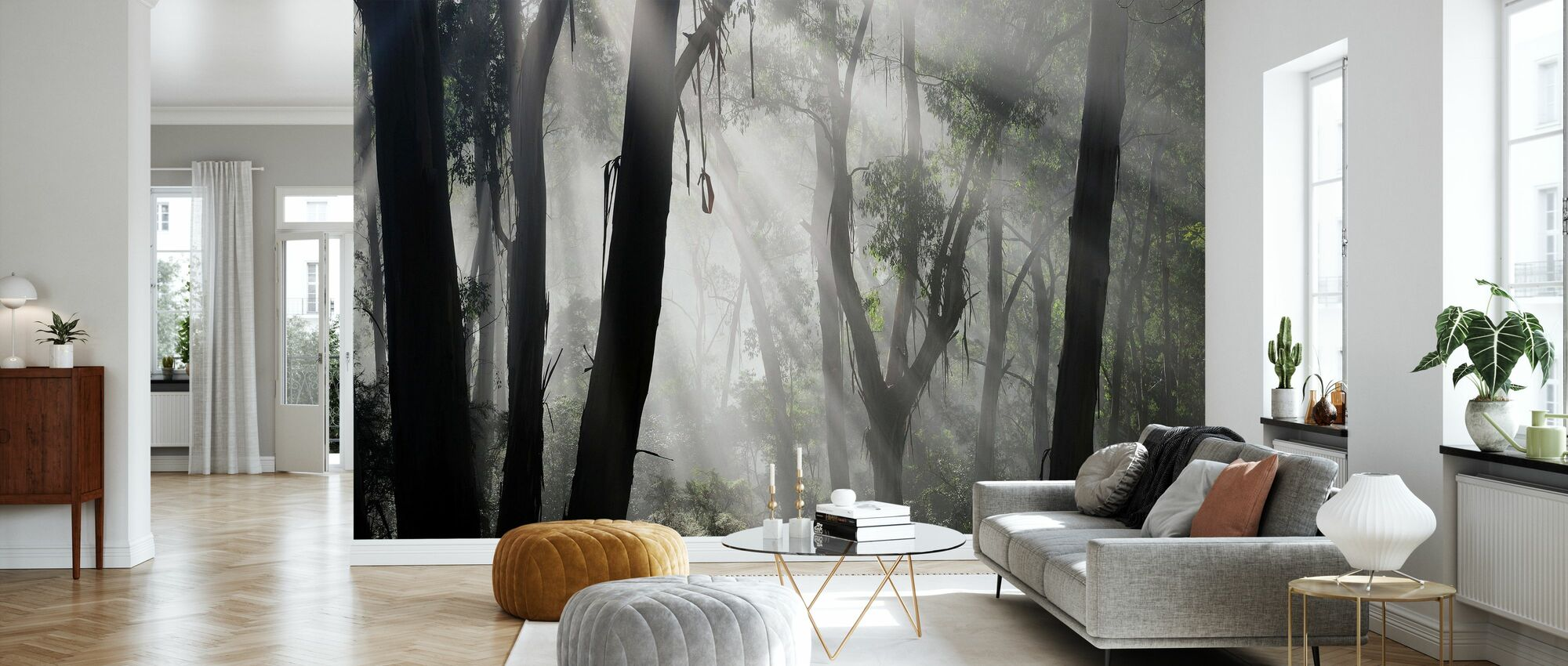 Eucalypt Forest Fog - Wallpaper - Living Room