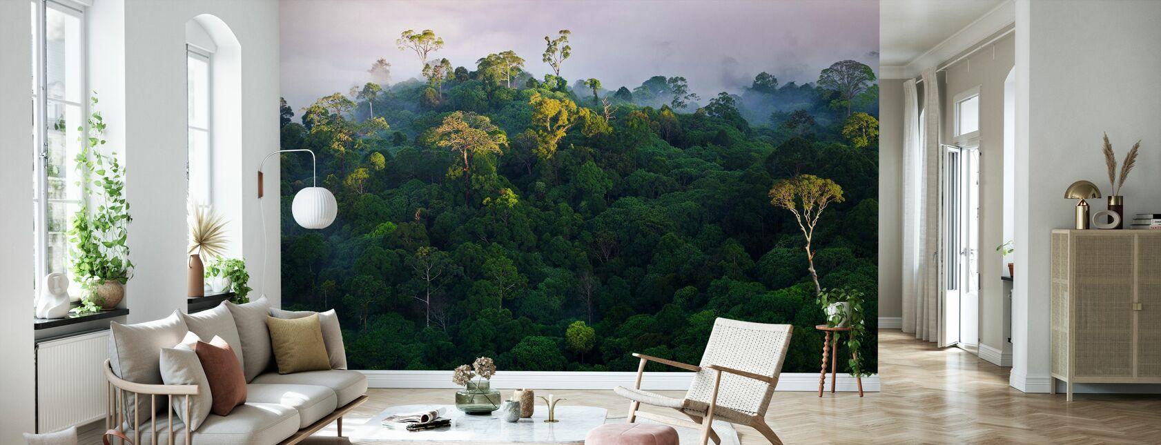 Soluppgång på Lowland Rainforest - Tapet - Vardagsrum