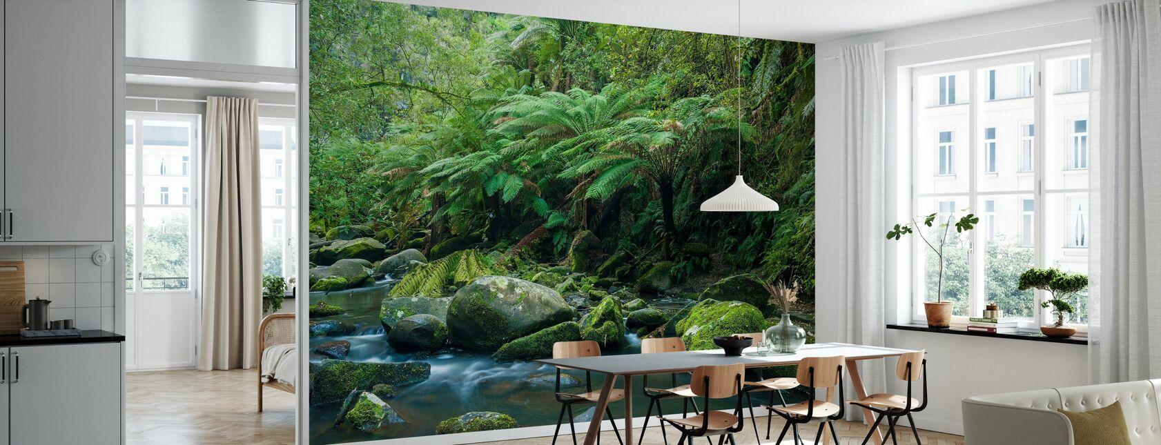 Great Otway National Park - Wallpaper - Kitchen