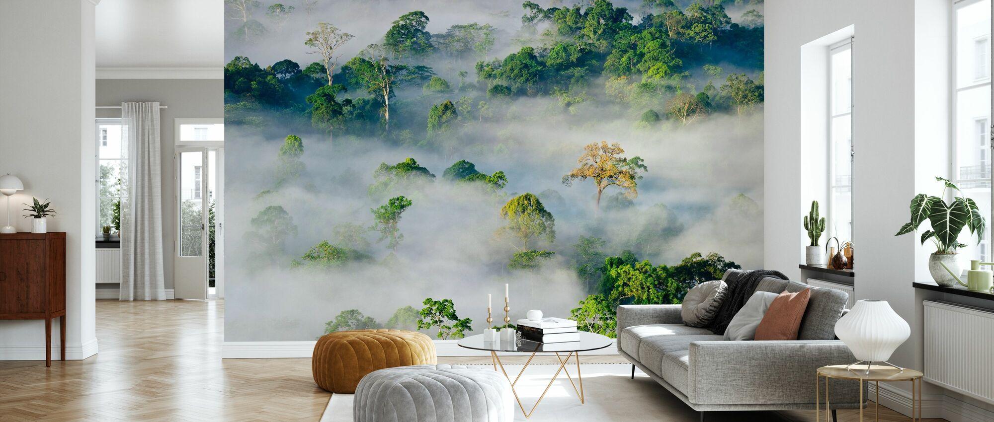 Lowland Dipterocarp Rainforest - Wallpaper - Living Room