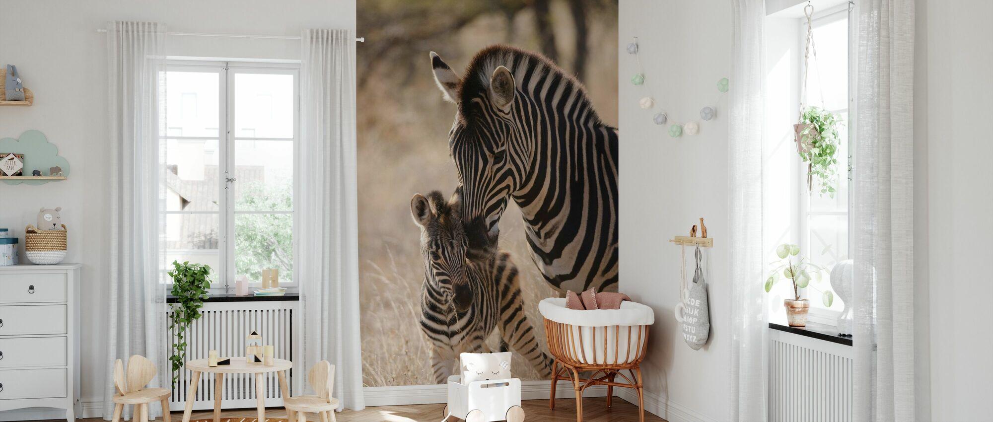 Plains Zebra - Wallpaper - Nursery