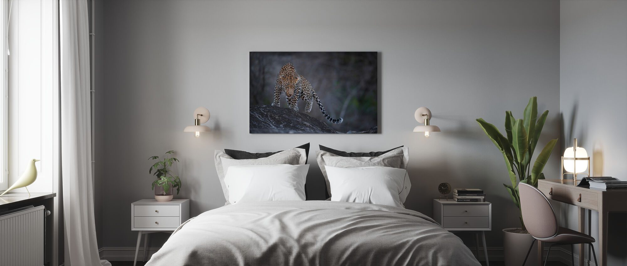 Leopard on a Rock - Canvas print - Bedroom