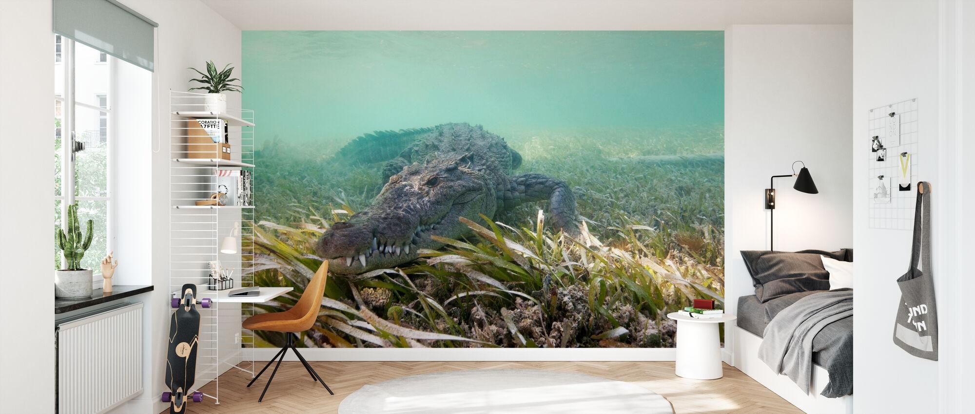 Amerikanisches Krokodil - Tapete - Kinderzimmer