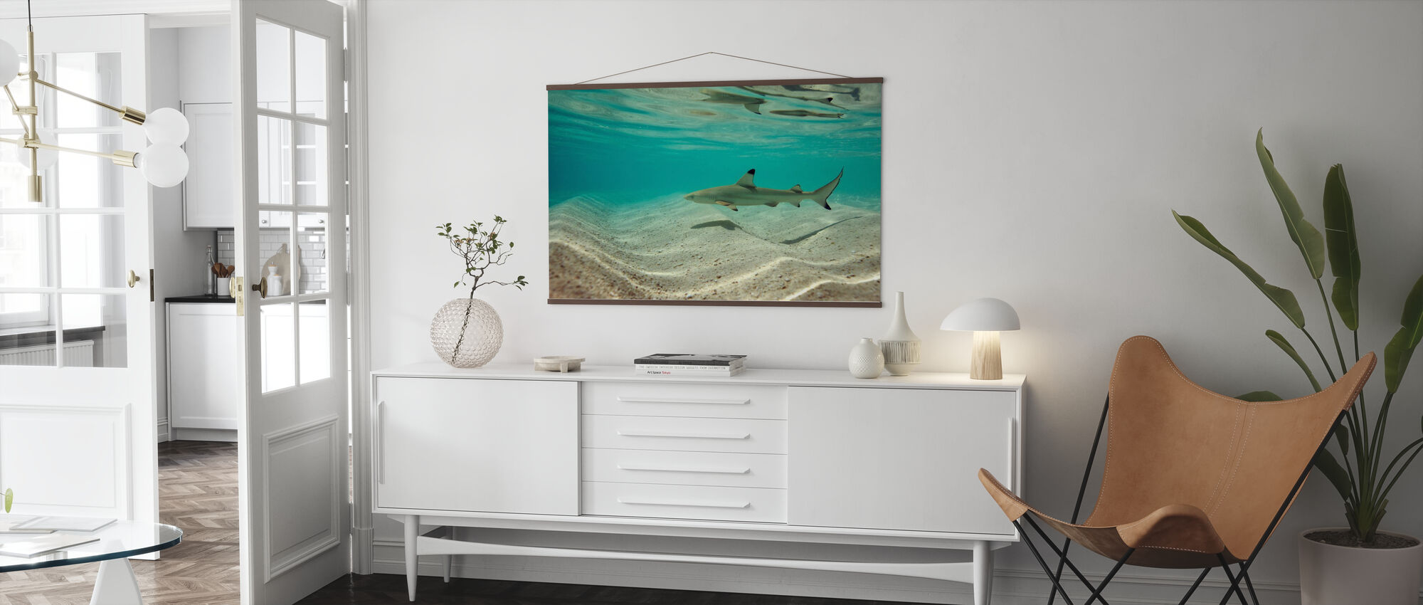 Blacktip Reef Shark - Poster - Living Room