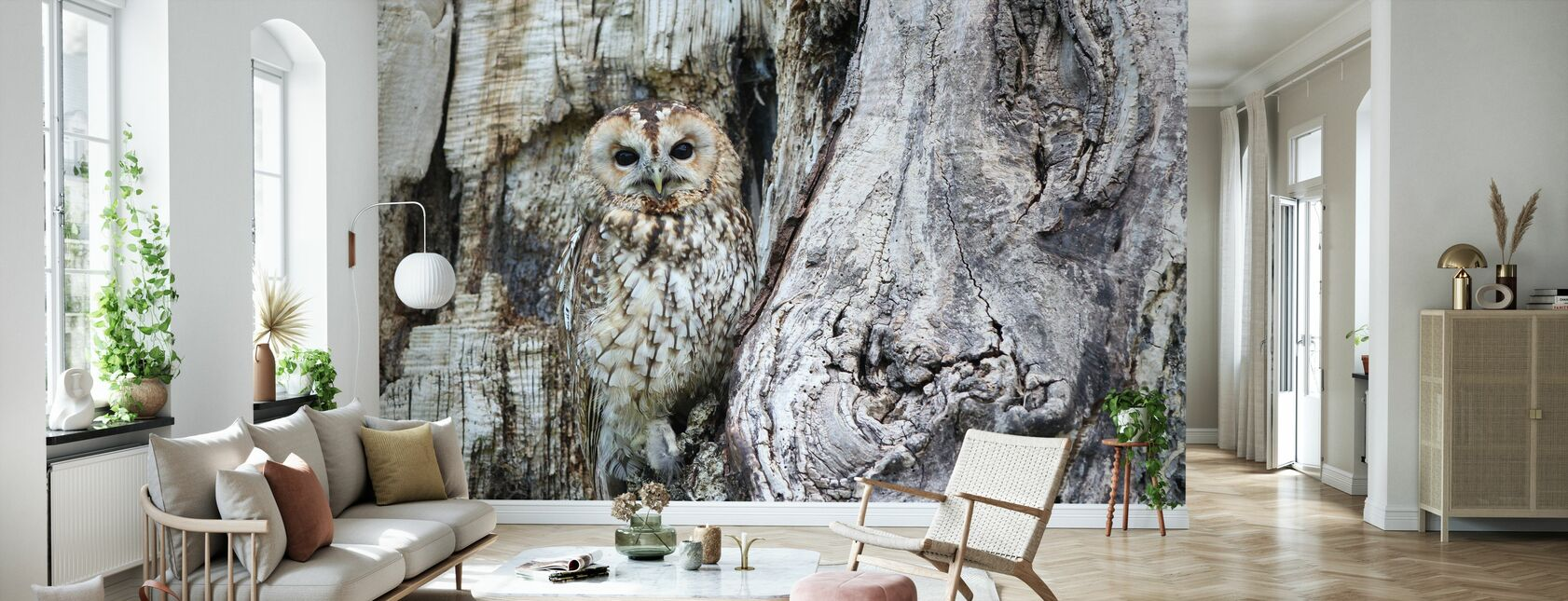Kamouflage Uggla - Tapet - Vardagsrum