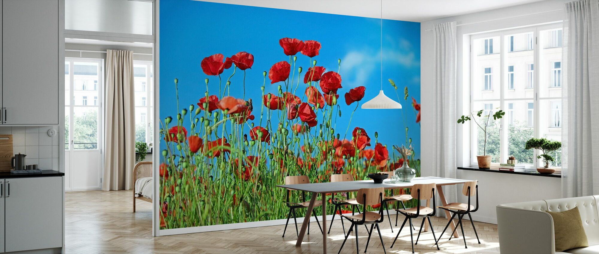 Field of Poppies - Wallpaper - Kitchen