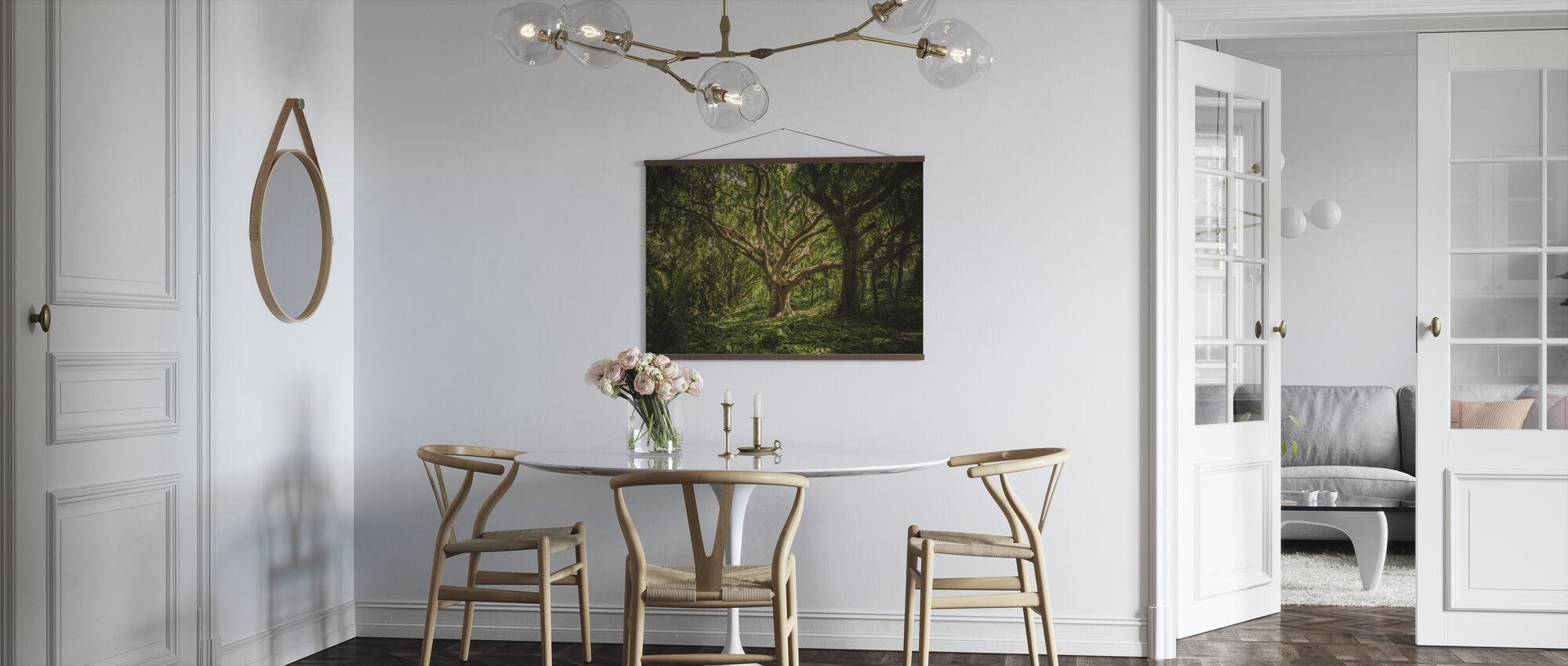 Großer Baum - Poster - Küchen