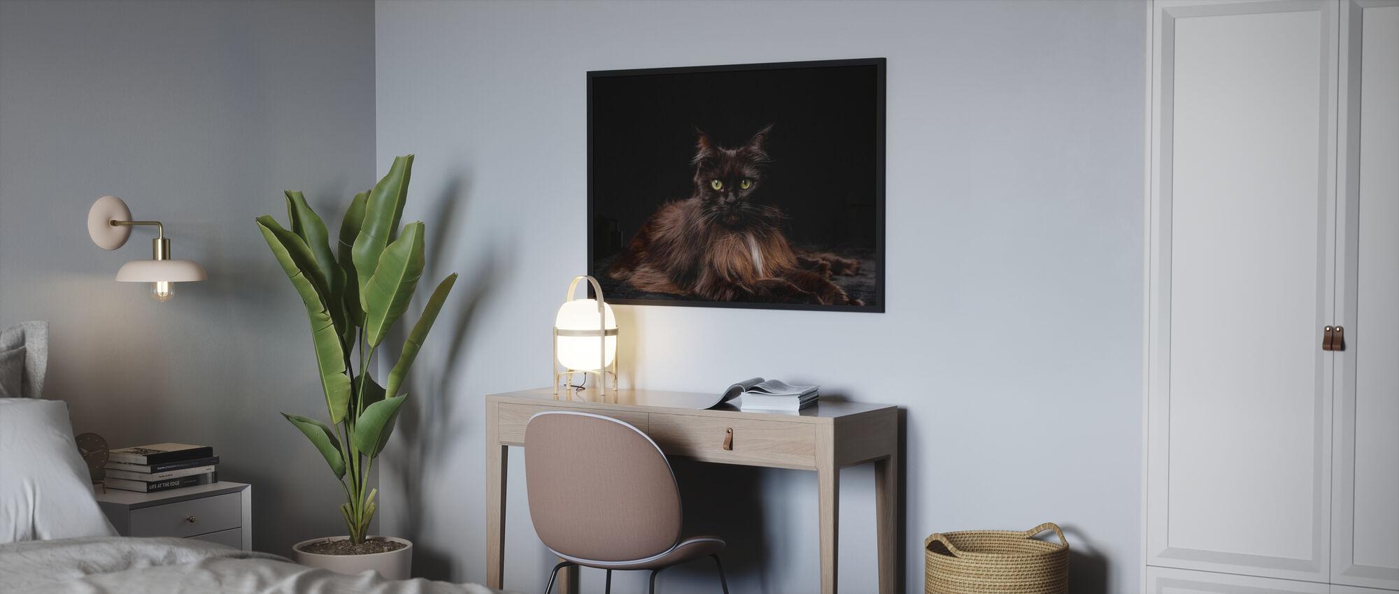 Maine Coon Cat Brown - Poster - Bedroom