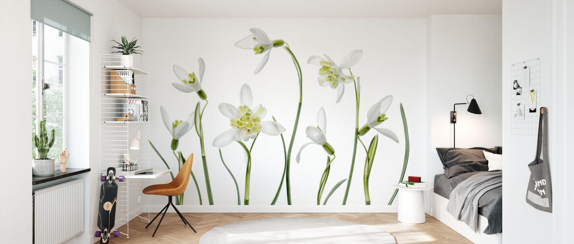 Spring Snowdrops - Wallpaper - Kids Room