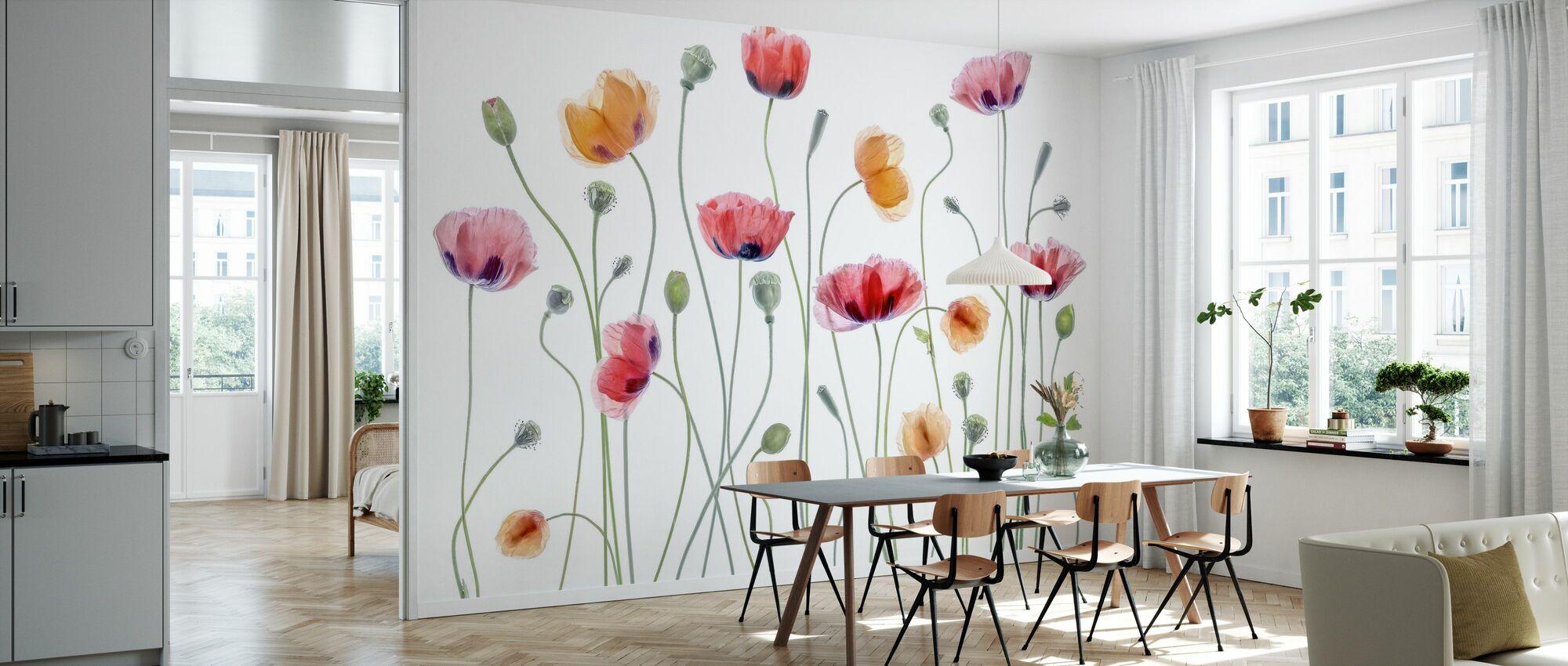 Papaver Party - Wallpaper - Kitchen