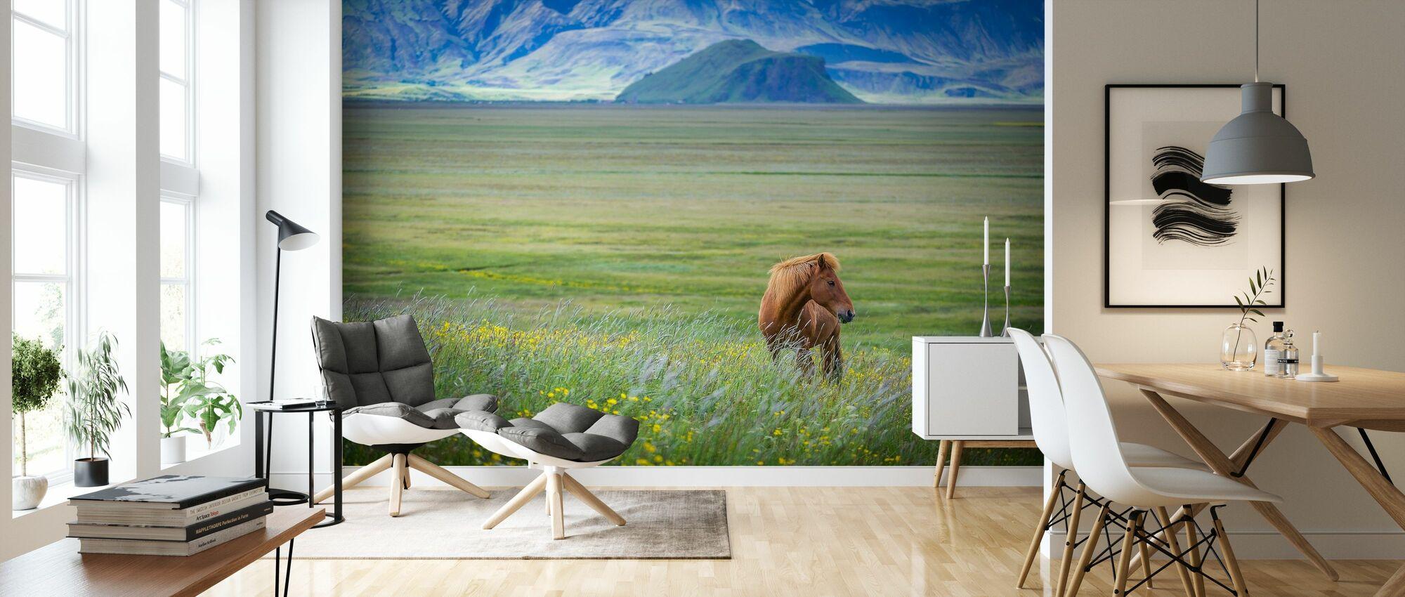 Island i ett nötskal - Tapet - Vardagsrum