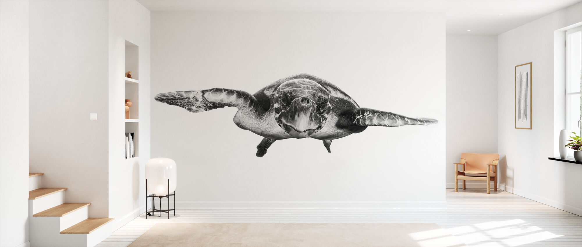 White and Turtle - Wallpaper - Hallway