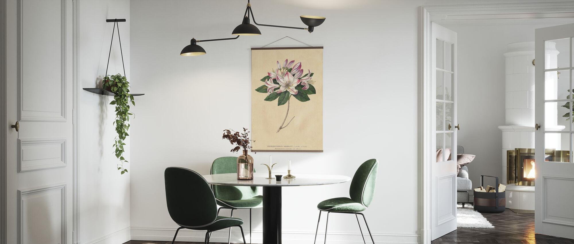 Rhododendron Vintage - Plakat - Kjøkken