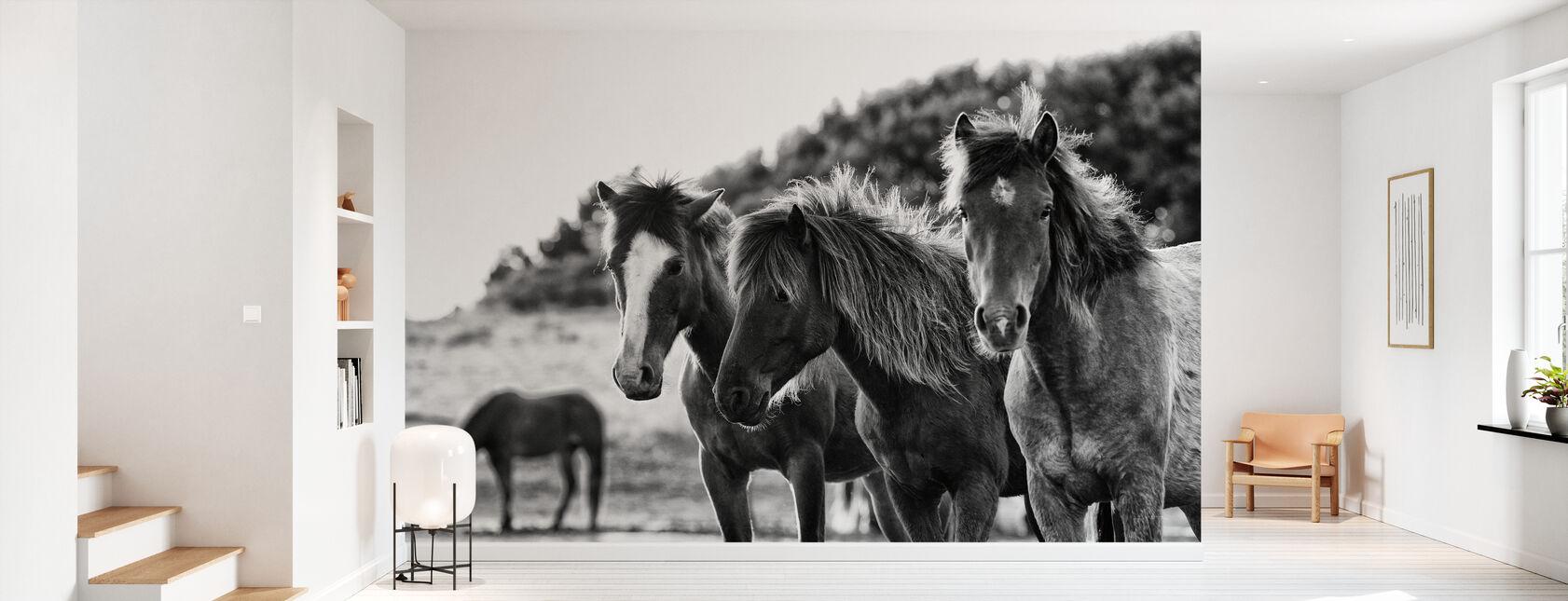 Hästar tre - Tapet - Hall