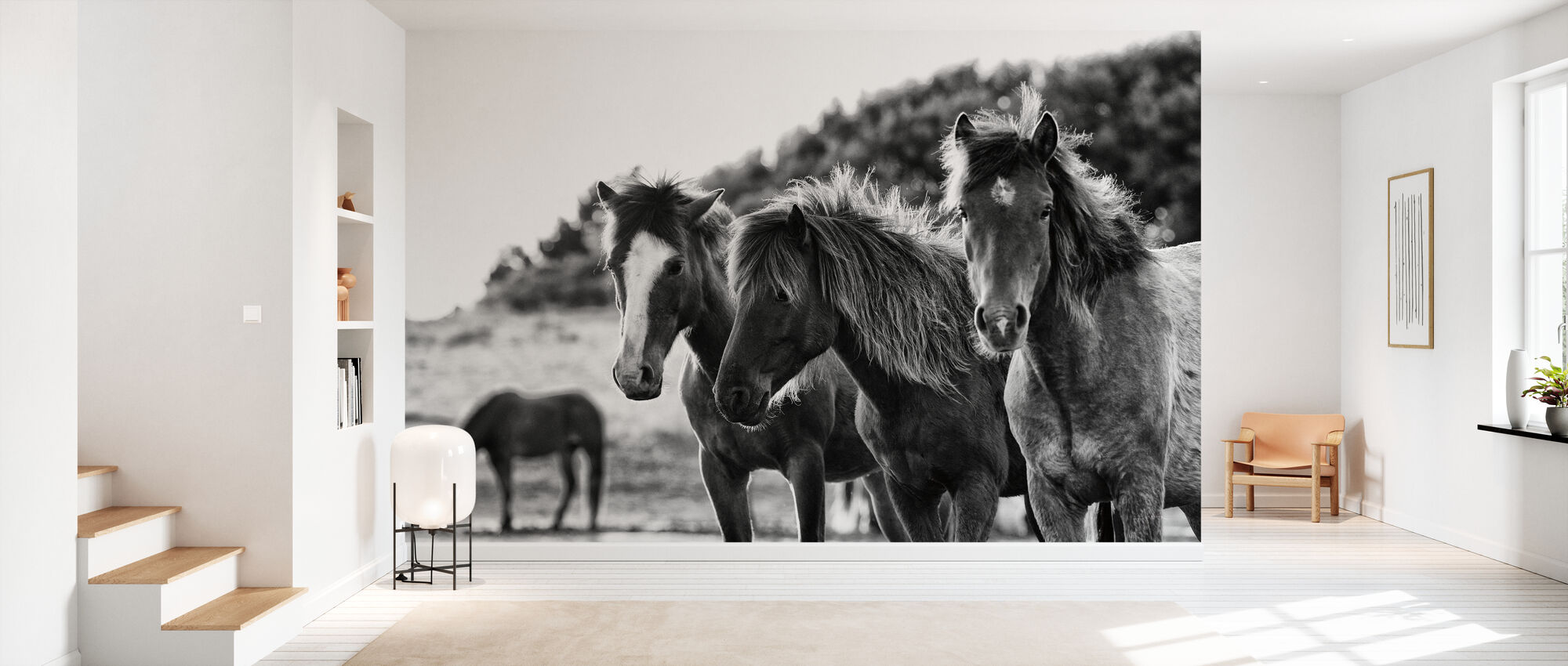 Horses Three - Wallpaper - Hallway