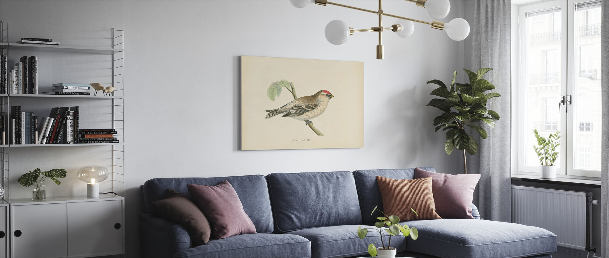 Mealy Redpole Print - Canvas print - Woonkamer
