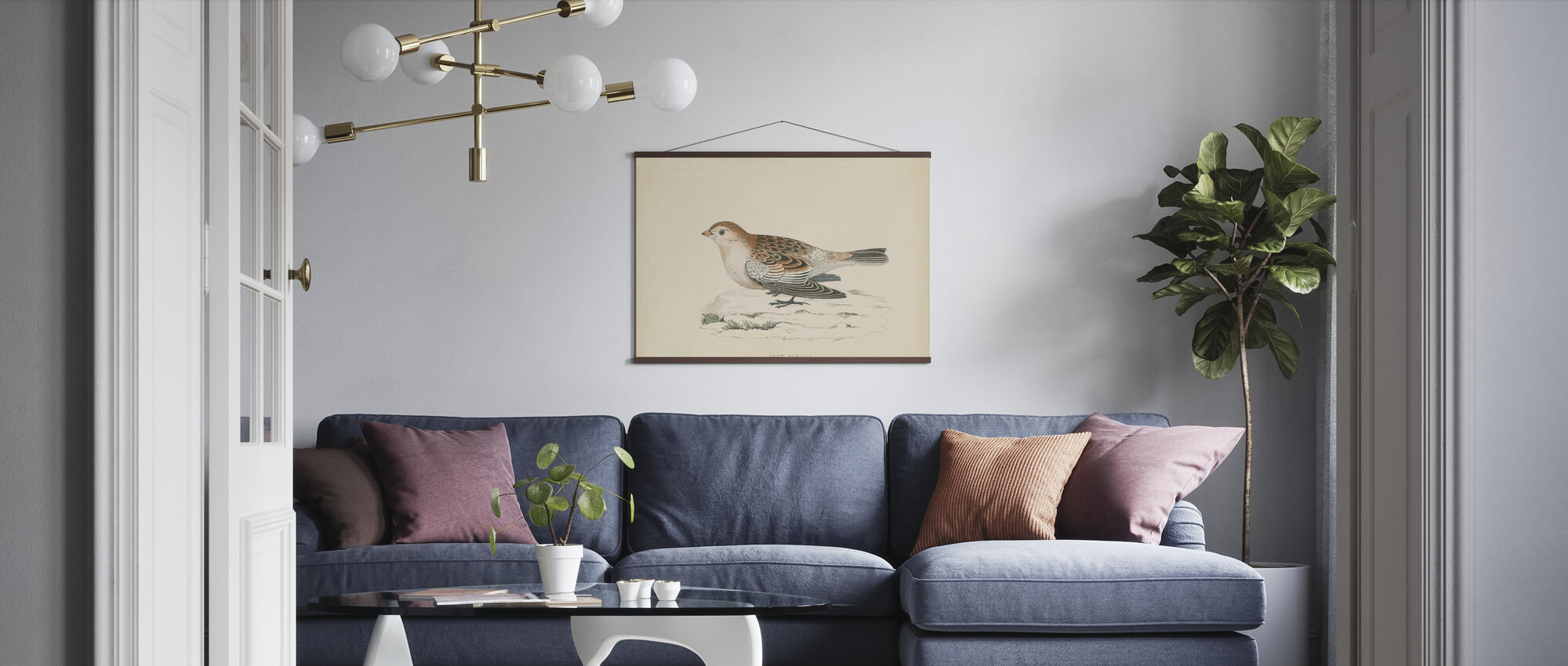 Snow Bunting Print - Poster - Living Room