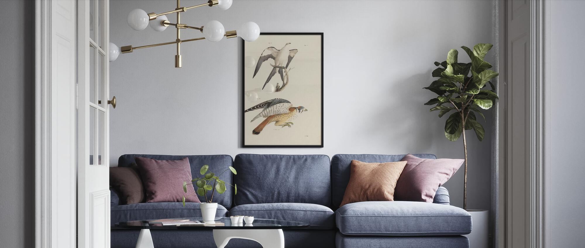 Birds of Prey I - Poster - Living Room