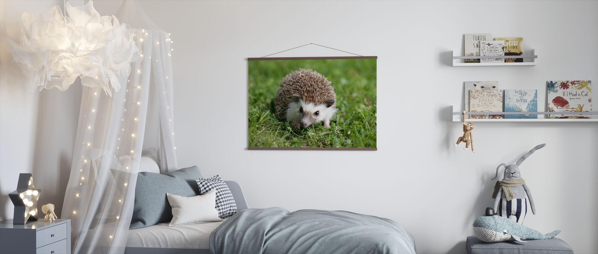 Hedgehog on Lawn - Poster - Kids Room