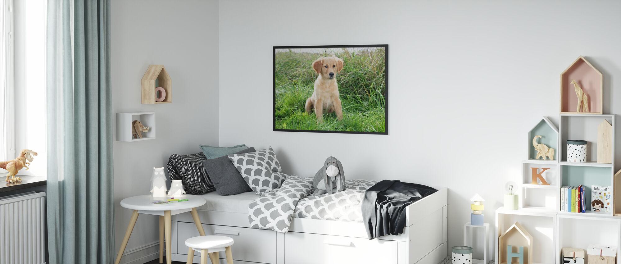 Golden Retriever Puppy in Meadow - Poster - Kids Room