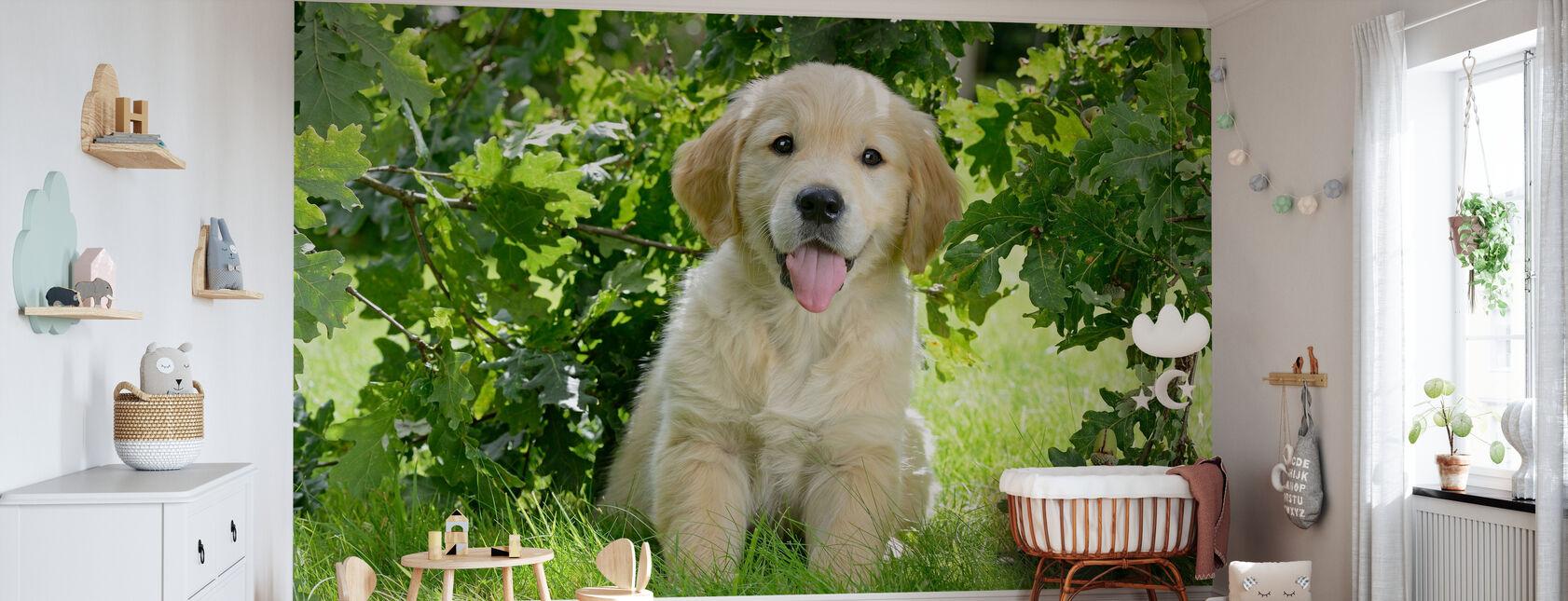 Golden Retriever Puppy - Behang - Babykamer