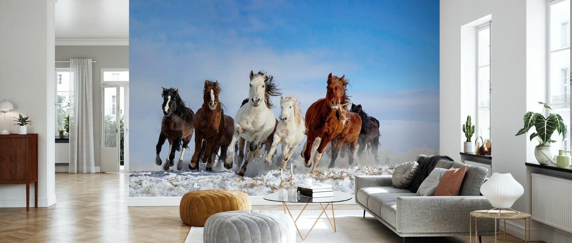 Mongolia Horses - Wallpaper - Living Room