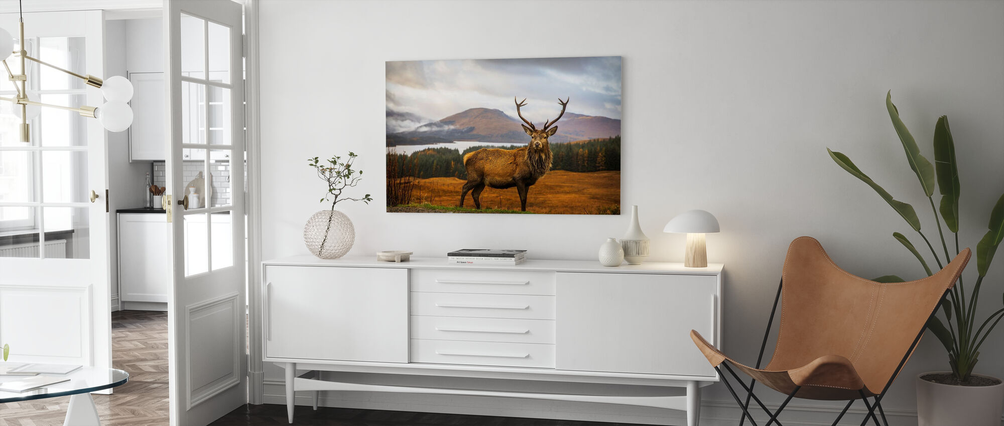 Scottish Stag - Canvas print - Living Room