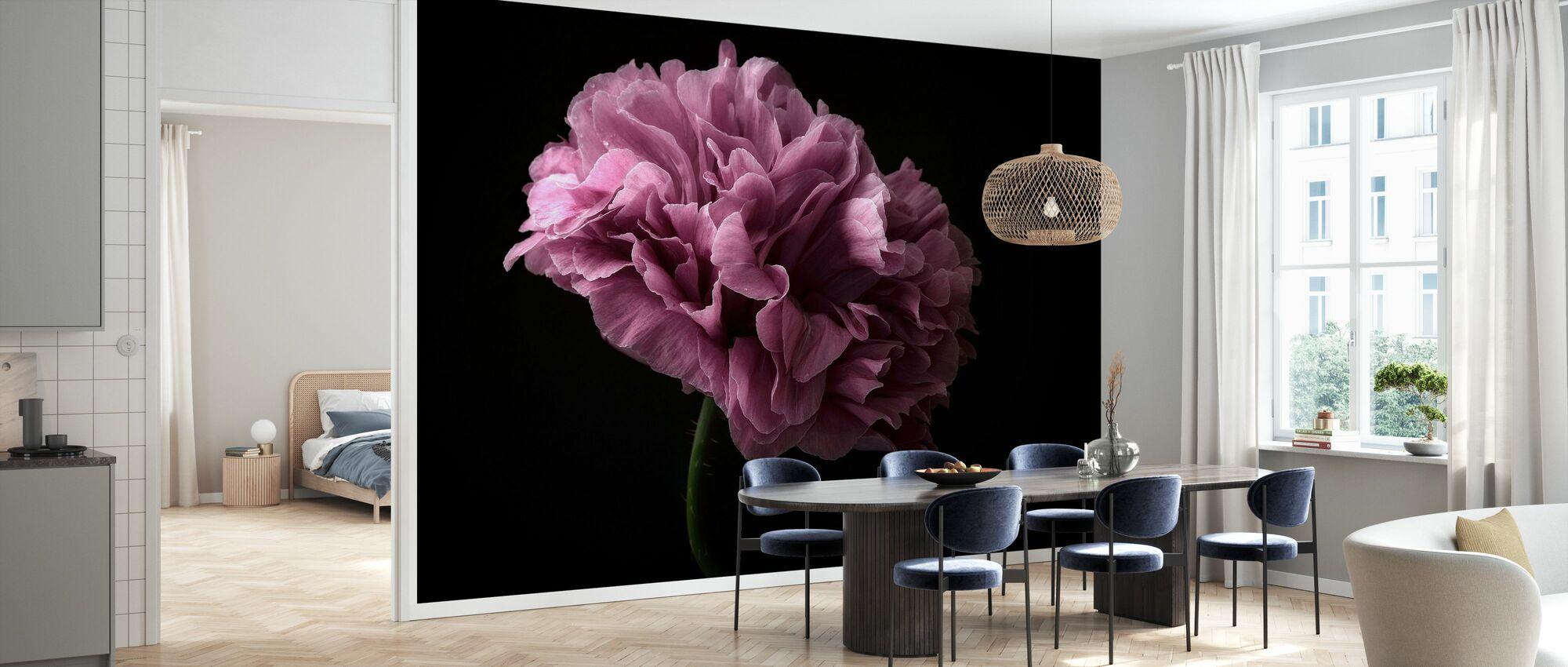 Poppy - Wallpaper - Kitchen