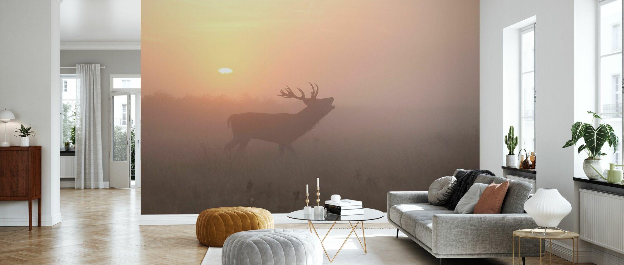 tåkete morgen hjort - Tapet - Stue