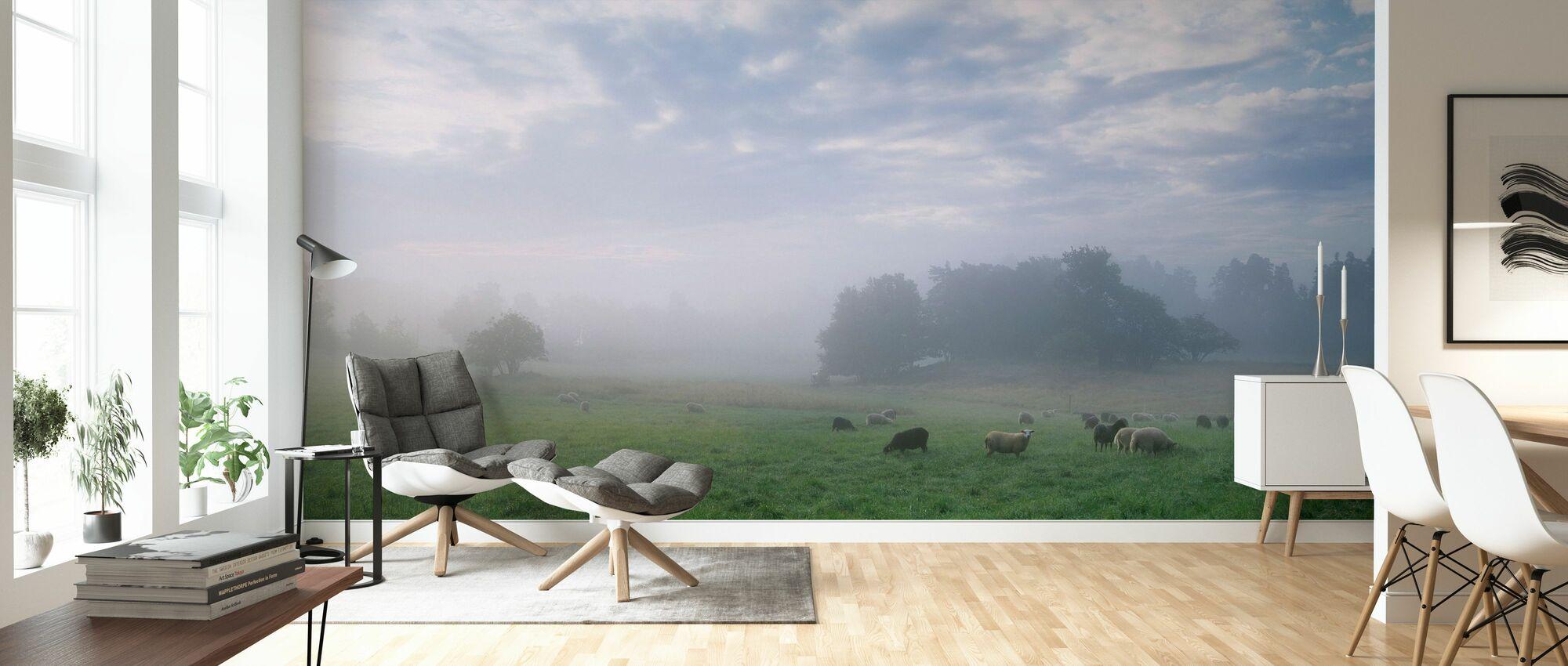 Får på betesmark i morgon dimma - Tapet - Vardagsrum