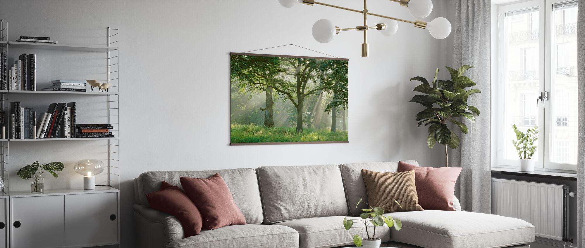 Solstrålar i bokskogen - Poster - Vardagsrum