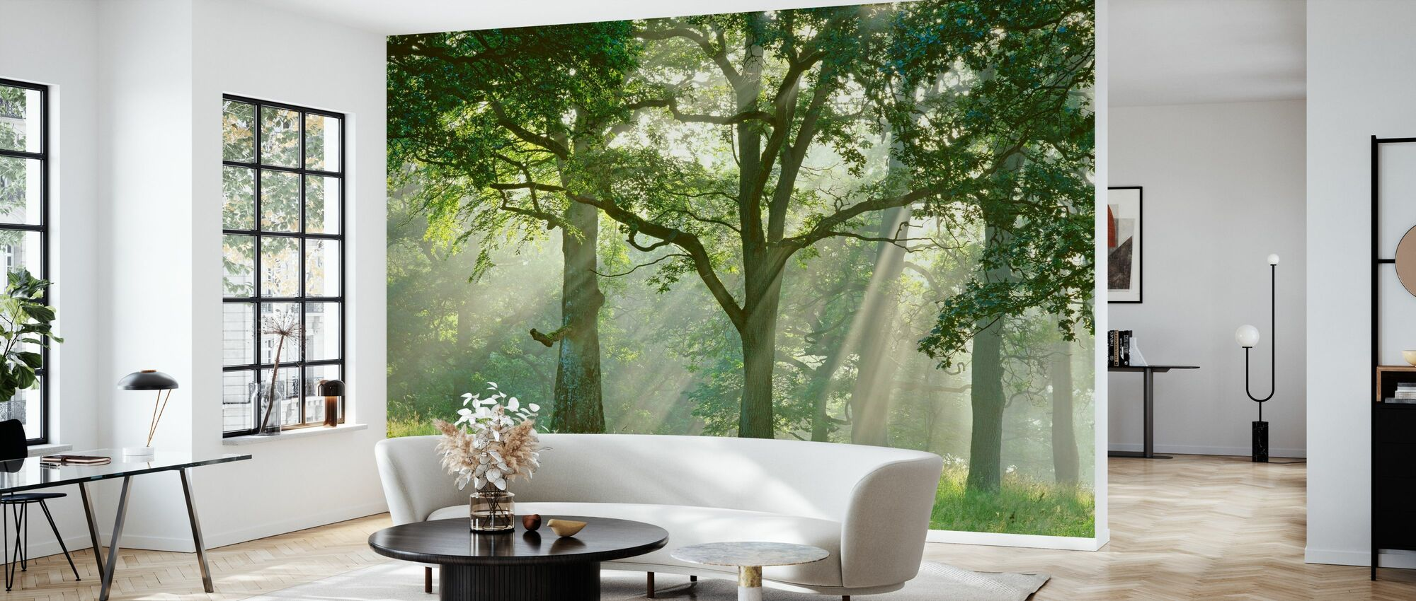 Sunbeams in Beech Forest - Wallpaper - Living Room