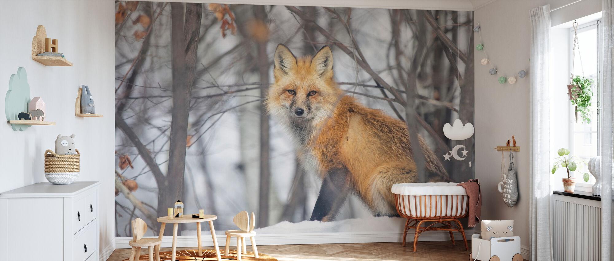 Rødt Fox - Tapet - Babyrom