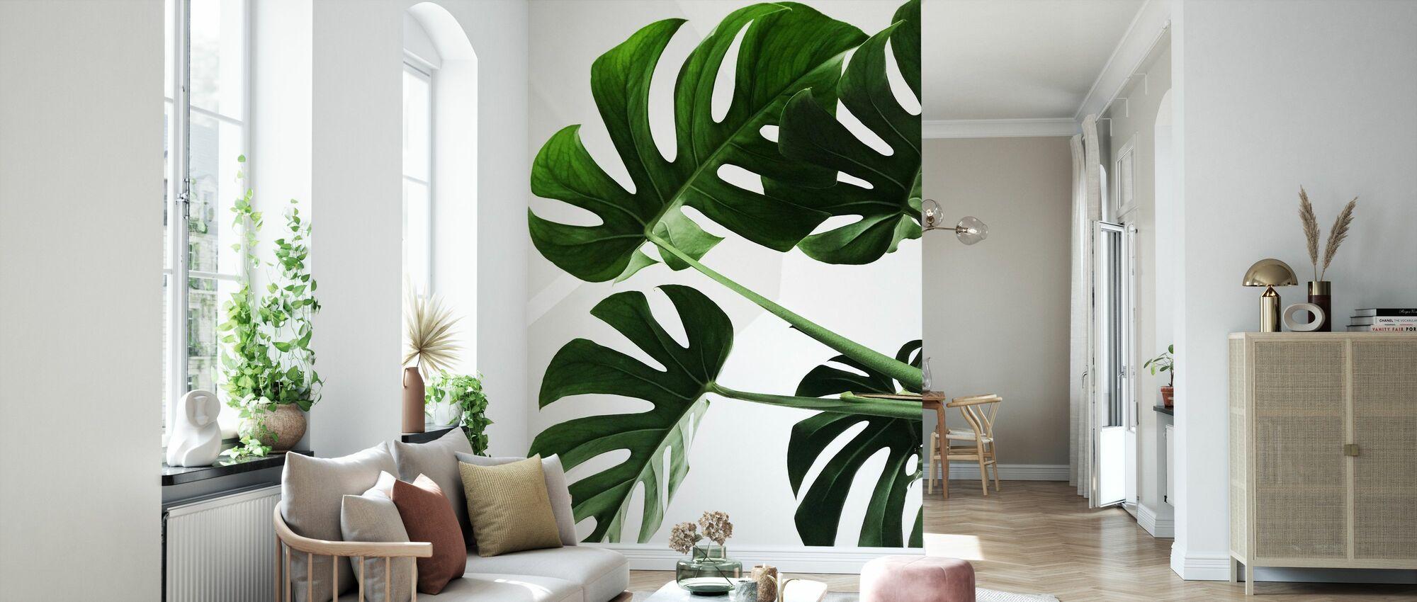 Monstera Blätter - Tapete - Wohnzimmer