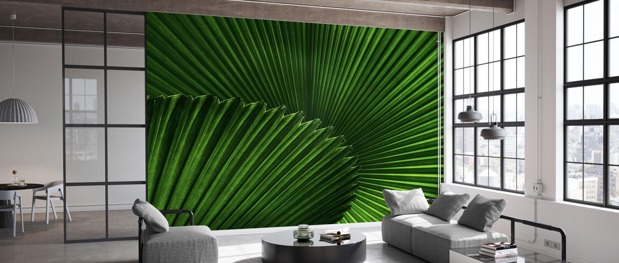 Fan Palm Leaves - Wallpaper - Office