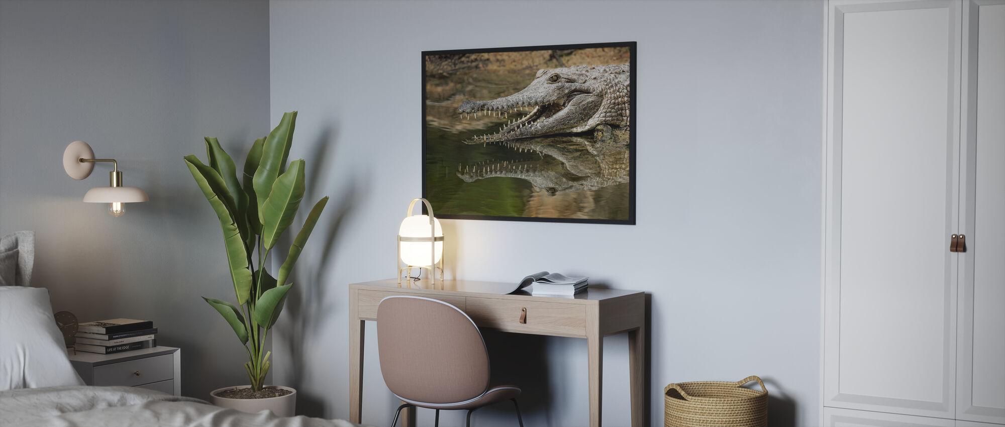 Freshwater Crocodile - Poster - Bedroom
