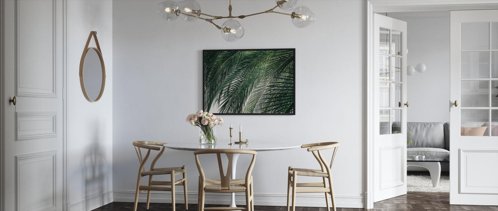 Palm Tree - Poster - Kitchen