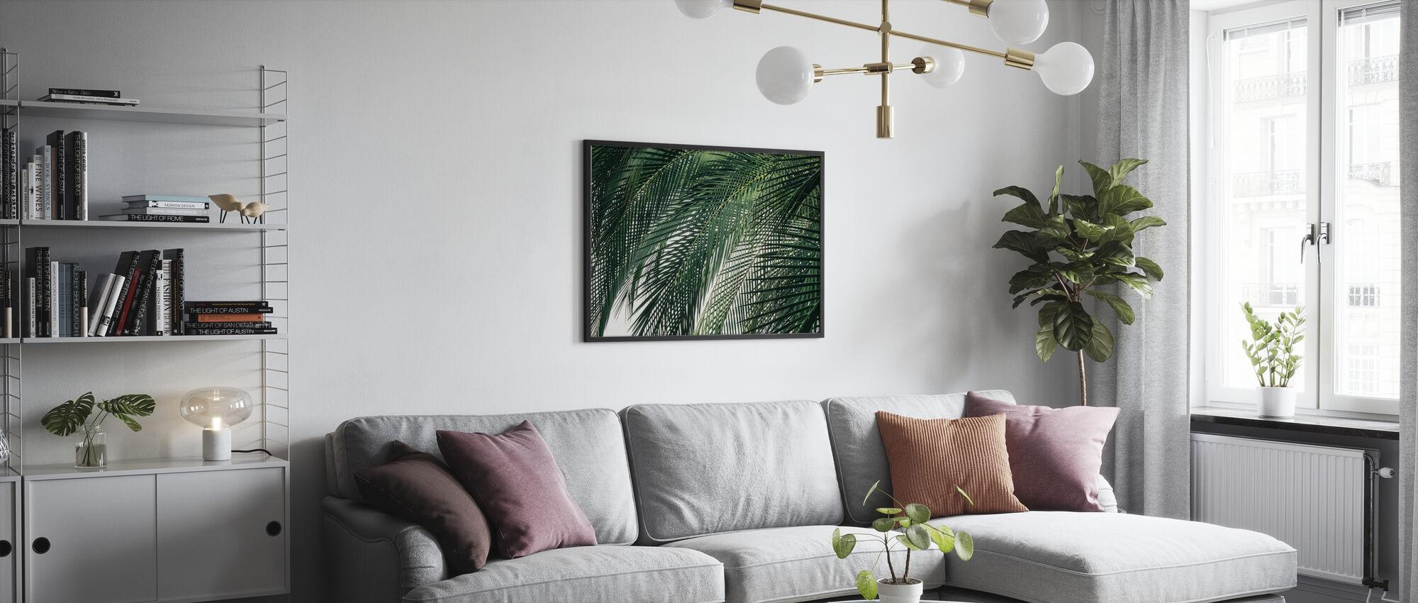 Palm Tree - Framed print - Living Room