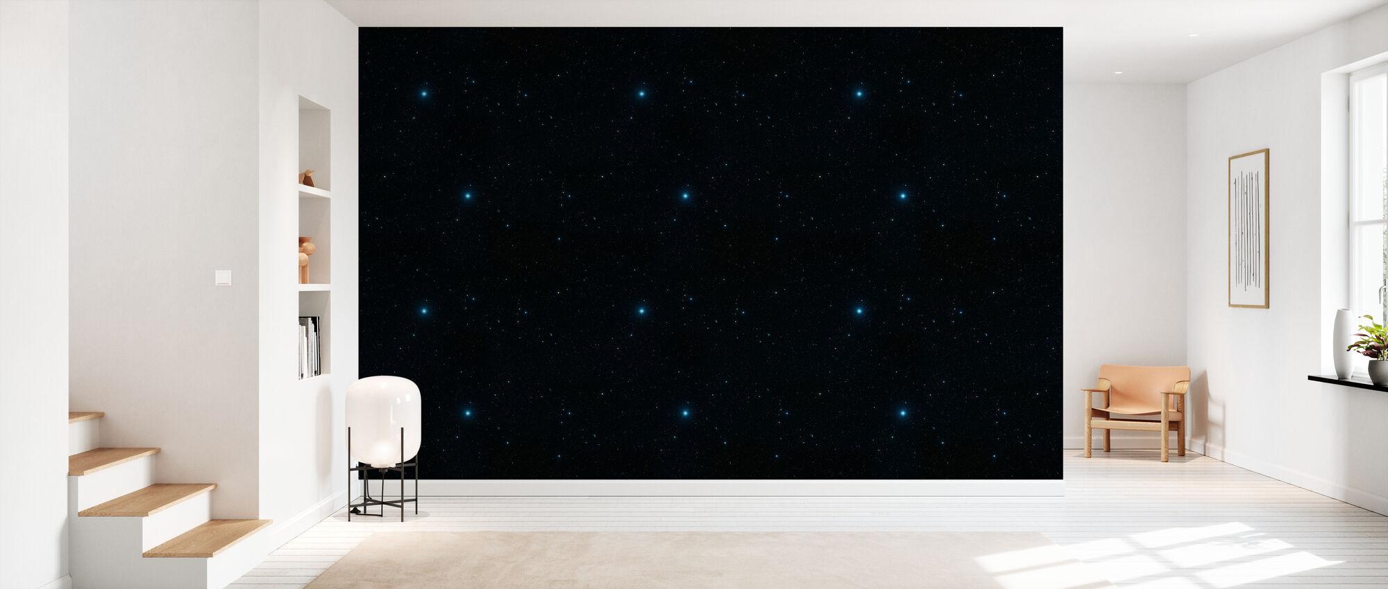 Starly - Wallpaper - Hallway