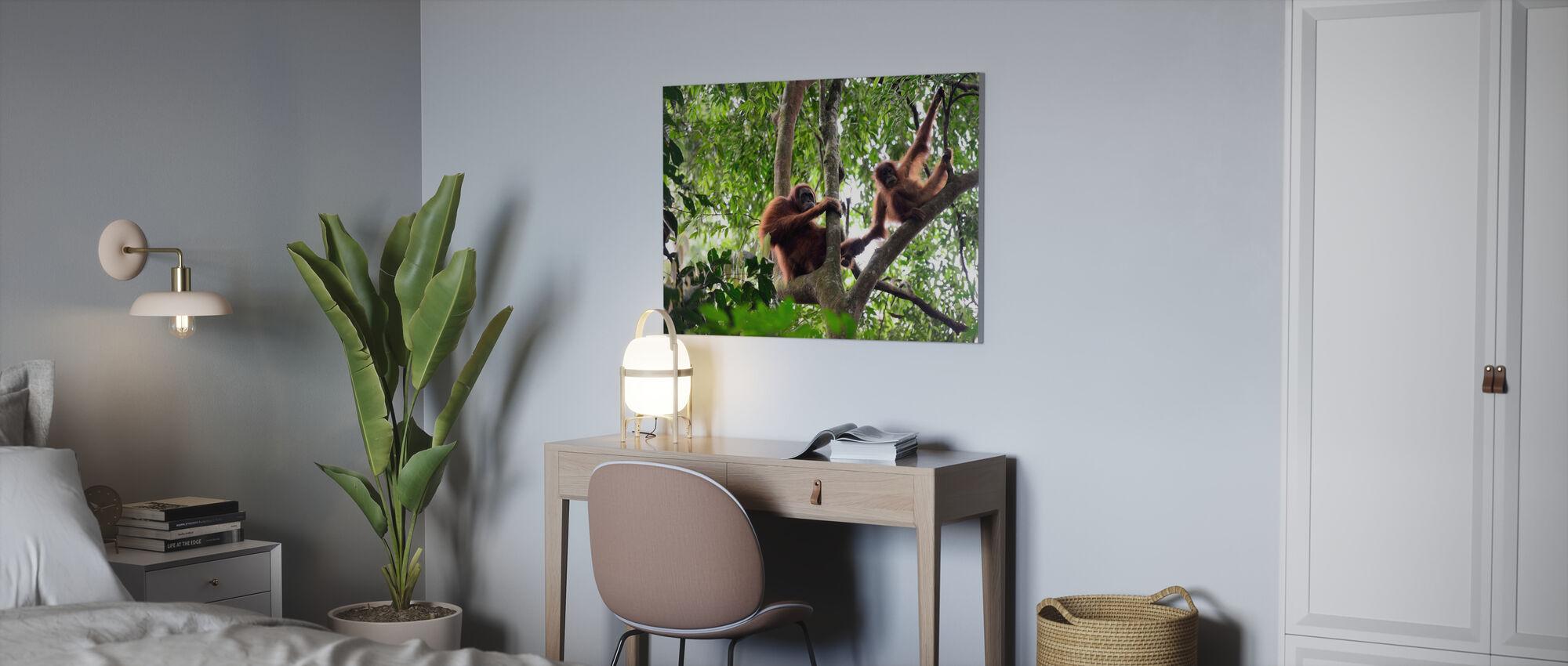 Female and Infant Orangutan - Canvas print - Office